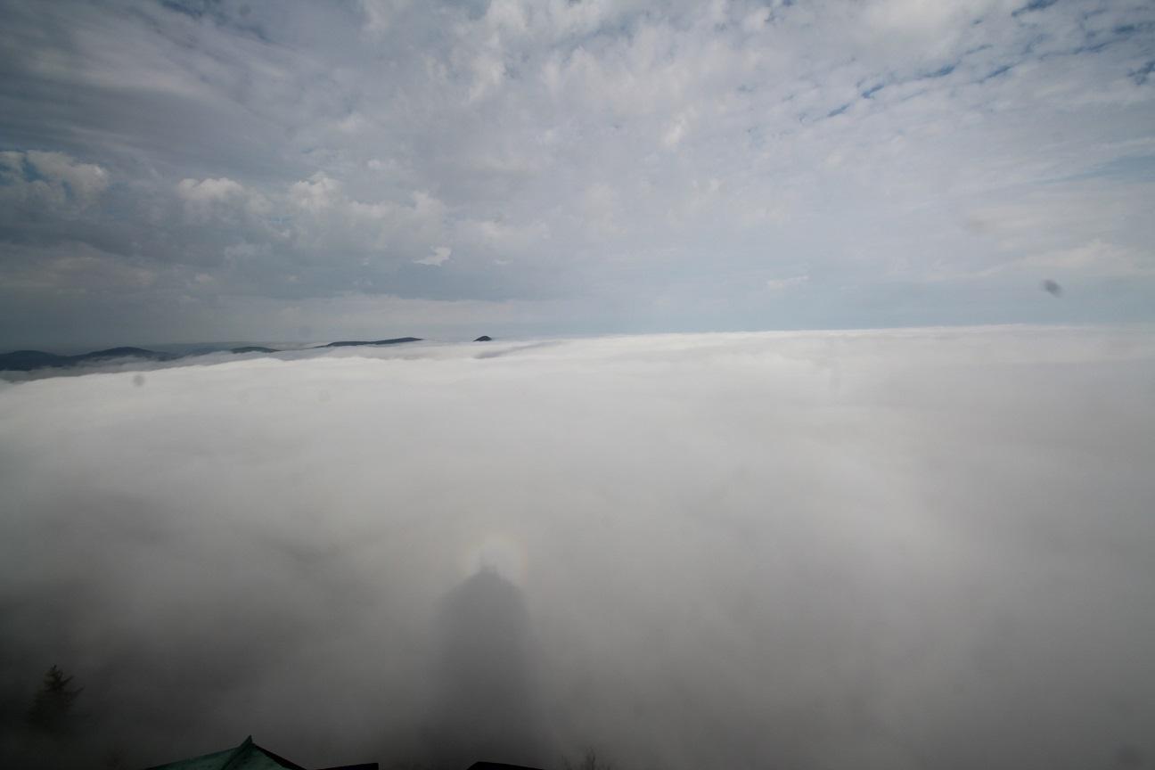 Zittauer Gebirge Nebel